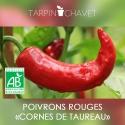 Graines Poivrons Bio - Cornes de Taureau