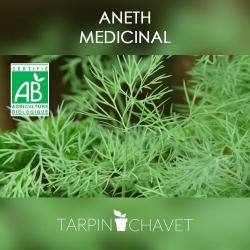Aneth Biologique - Graines à semer