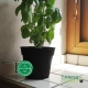 Pot de Fleurs Horticole - 1 Litre / Coloris NOIR