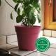 Pot de Fleurs Horticole - 1 Litre / Coloris ROSE PINK