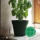 Pot de Fleurs Horticole - 1 Litre / Coloris vert sapin