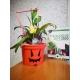 Pot de Fleurs Horticole 3 litres - coloris ORANGE HALLOWEEN