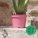 Pot de Fleurs Horticole 3 litres - coloris PINK