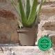 Pot de Fleurs Horticole 3 litres - coloris TAUPE