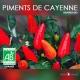 Piment de Cayenne - Graines BIO
