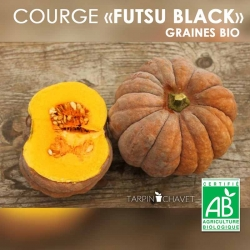 Graines Courges Bio Futsu Black - Photo par Atypyc Semences