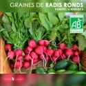 "Graines de Radis Ronds Bio ""Rudolf"""
