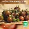 "Graines de Tomates Cocktail Bio ""Black Cherry"""