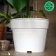 Pot de Fleurs Horticole 4 litres