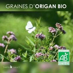 Graines d'Origan Bio