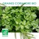 Graines de Coriandre Cultivée Bio