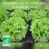 "Graines de Laitue Verte Bio ""Salad Bowl"""