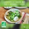 """Graines de Radis Noirs Bio """"Gros Ronds d'Hiver"""""""
