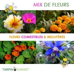 """Mesclun de Fleurs Comestibles et Mellifères """"Floratypyc"""""""