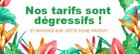 bannière prix dégressif Tarpin Chavet poterie horticole