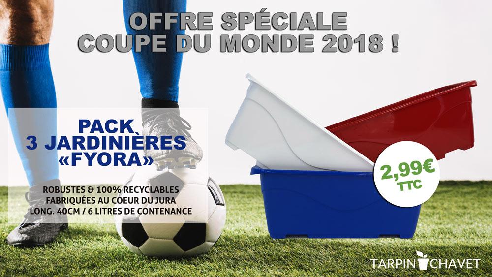Visuel jardinière bleu blanc rouge coupe du monde 2018 football