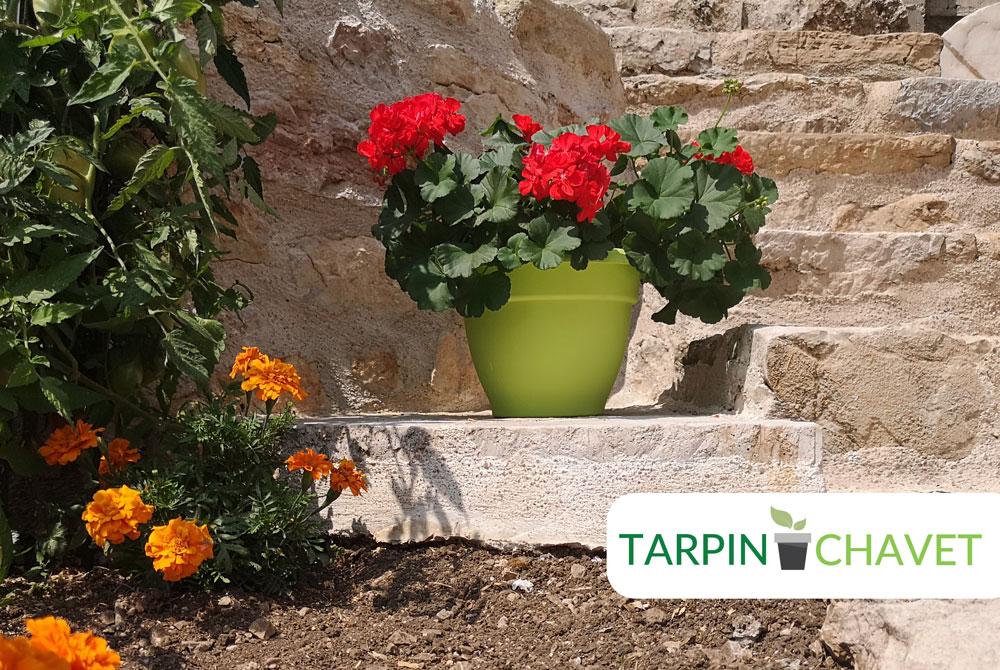 "Pot de fleur plastique vert anis ""Campane"" Tarpin Chavet"