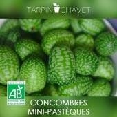 Vous connaissez le #cucamelon ? Appelé également Concombre Mini-Pastèque ou concombre Mexicain, c'est un petit fruit surprenant, rafraîchissant et désaltérant qui fera fureur à l'apéro... Et c'est Bio !https://tarpin-chavet.fr/graines/59-graines-concombre-mini-pasteque-bio-cucamelon.html . #cucamelon #concombremelon #bio #potager #potagerbio #apero