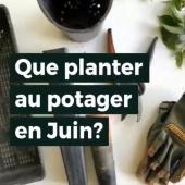 🌻 Prêts pour les Semis du Mois ? RDV sur tarpin-chavet.fr ! #jardinage #semis #jardin #jardinage #potager #potagerBio