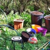 Journée semis avec pots, bacs et terreau #bio de chez tarpin-chavet.fr 🌱🤗 💫