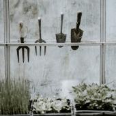 🍃 Novembre au Potager ! Les Semis du mois sont dispo.. RDV sur notre Page Facebook Tarpin Chavet ! pssst... en plus on vous offre 20€ sur votre commande, dépêchez-vous, il n'y en aura pas pour tout le monde... . #jardinage #potager #gardening #bio #potagerbio #potagerurbain