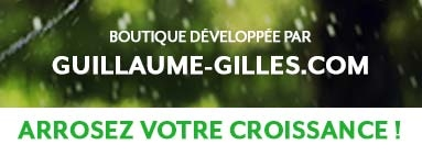 Guillaume-Gilles.com, freelance communication, marketing en ligne et formations webmarketing